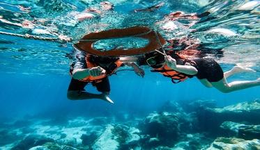รีวิวดำน้ำเกาะช้างอย่างง่าย